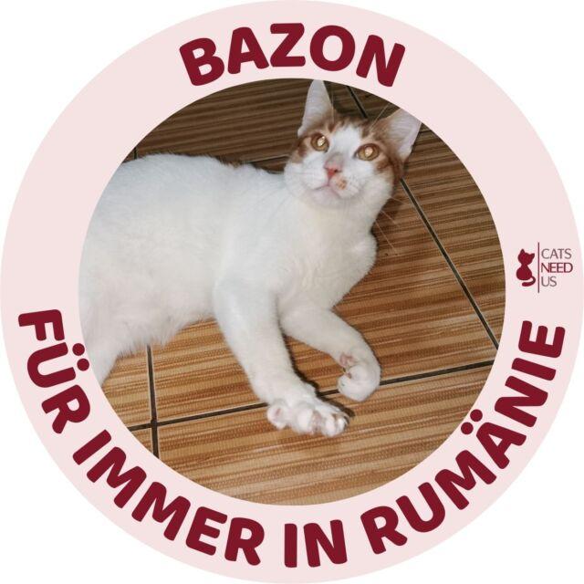 Bazon RO