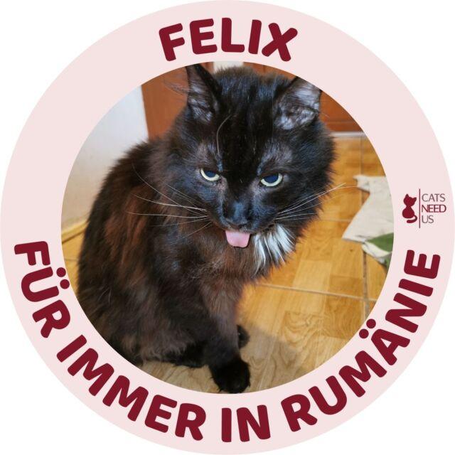 Felix RO