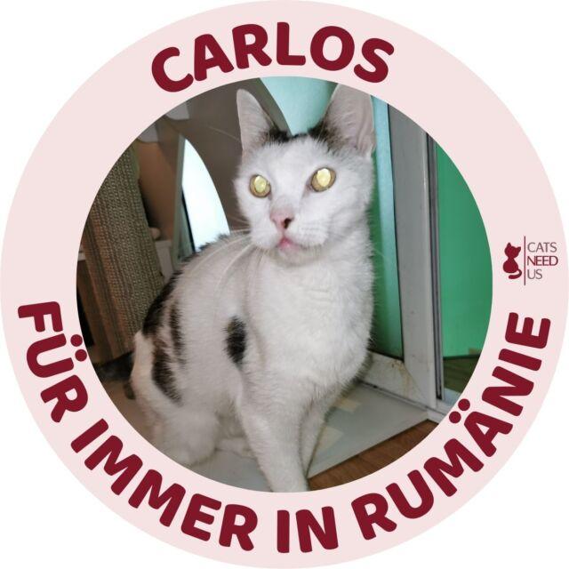 Carlos RO