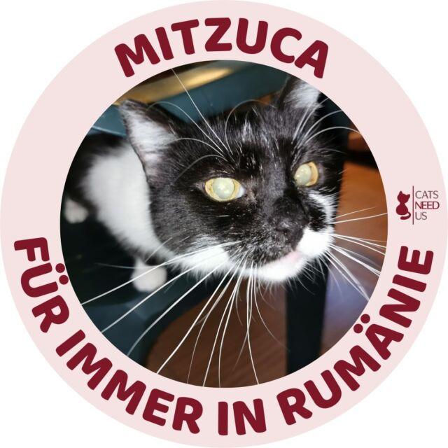 Mitzuca RO