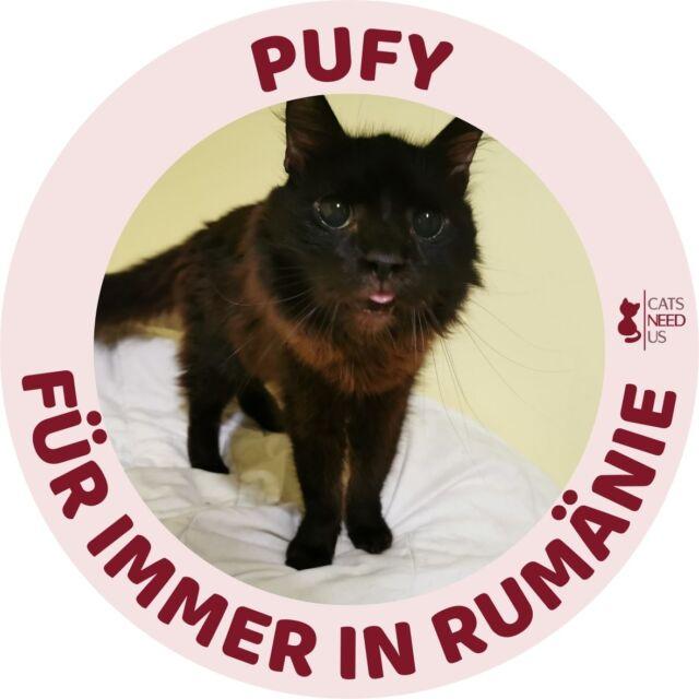 Pufy RO