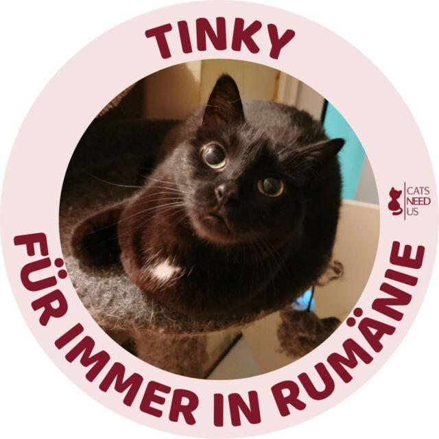 Tinky RO